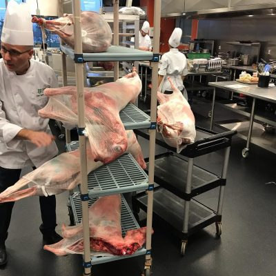 Lambs in Kitchen for Butchering Competition